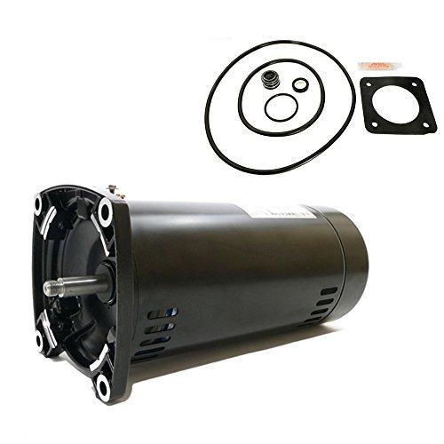 Sta-Rite Max-E-Glas 1HP PEA6E-124L Replacement Motor Kit AO Smith USQ1102 - Glas Pump Pool