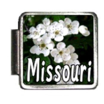 Missouri State Flower...