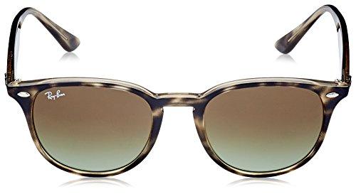 4259 Havana Grey Ban Ray RB Sonnenbrille wPtUY7
