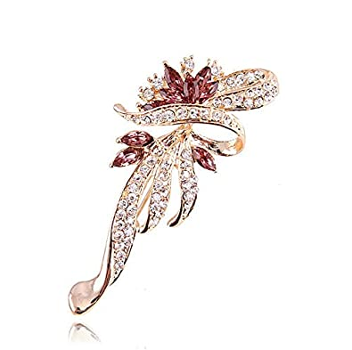 3a72227886b75 Crystal Fancy Vintage Style Brooch Pin for Women, Girls - - Amazon.com