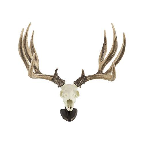 Big Rack Raxx Mule Deer Skull Ornament