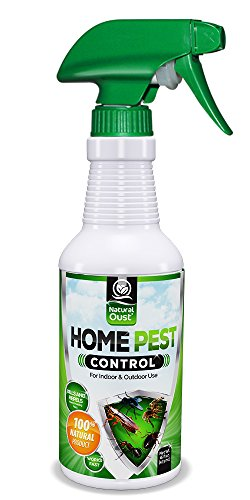 natural-oust-organic-home-pest-control-spray-10x-stronger-kills-repels-ants-roaches-spiders-and-othe
