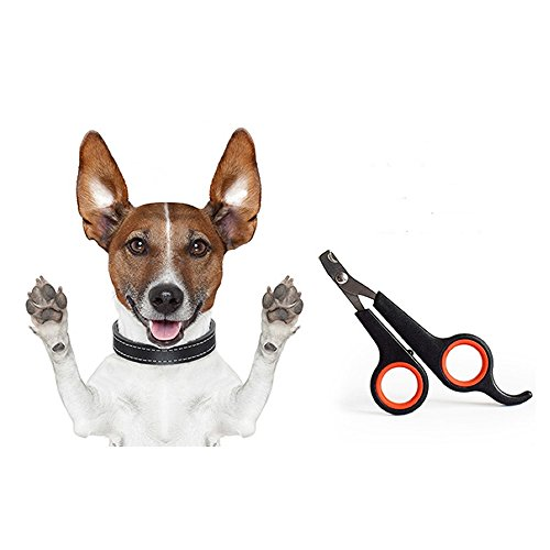 VEIREN 2 Pcs Pet Nail Clippers Pet Claw Scissors Great Nail Trimmer for Dogs, Cats, Birds, Rabbits (Black&Red) by VEIREN (Image #8)