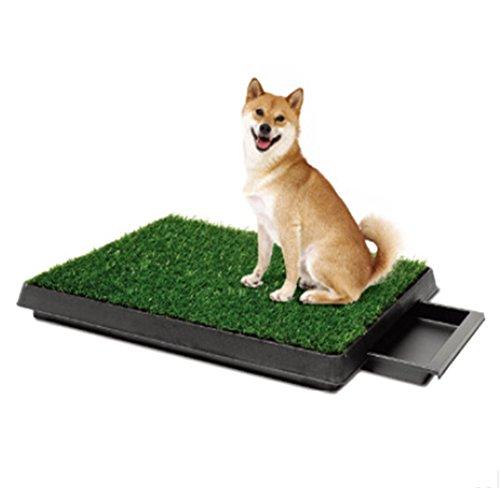 YAOBAO Perro Mascota Orinar Césped, Hierba Sintética, Allanamiento, Portátil, Fácil De Limpiar Orinal Perro