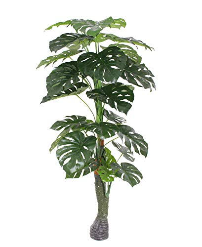 - AMERIQUE Gorgeous & Unique 5.7 Feet Monstera Palm Artificial Plant Silk Tree, Real Touch Technology, with UV Protection, Super Quality', Green