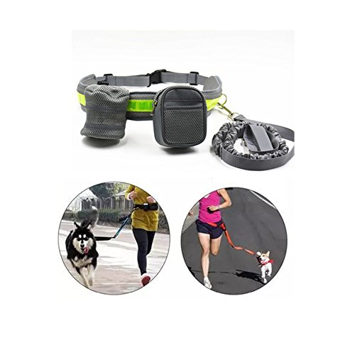 Machao Nylon Pets Traction Rope and Treat Bag and Phone Bag Reflector Belt (Riddick Costume For Sale)