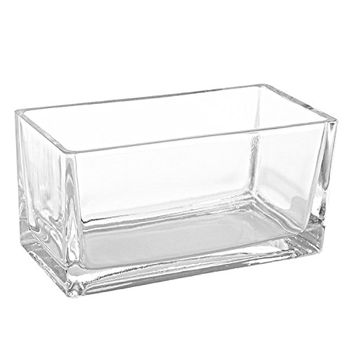 (MyGift 7.5-Inch Modern Rectangular Clear Glass Trough Vase, Succulent Planter Pot)