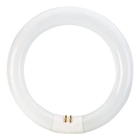 Philips 391169 Circline Fluorescent 22 Watt 8 Inch T9 Cool White