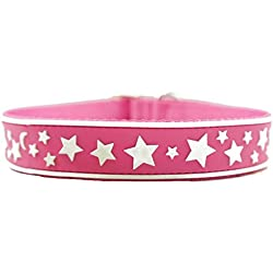"Glow-in-the-dark Stars Print Nylon Pet Collar for Dogs, Mulltiple Colors & Matching Leash Available (Medium (15.75"" x 3/4), Pink)"