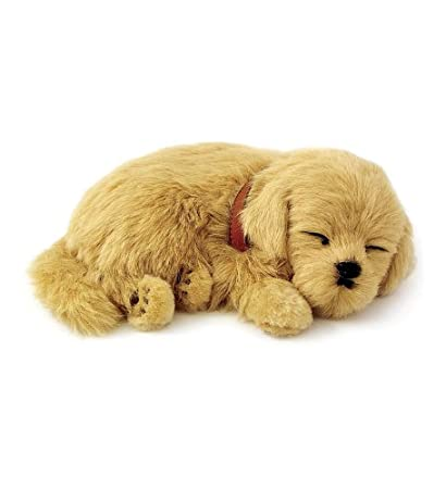 Amazoncom Perfect Petzzz Golden Retriever Puppy Home Kitchen