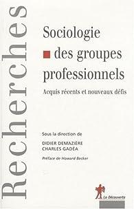Sociologie des groupes professionnels : Acquis récents et nouveaux défis par Didier Demazière