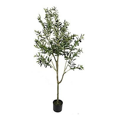UNIQUE FOREST ARTS 6-Feet- 4-Feet Olive Silk Tree,Artificial Silk Plant,Artificial Tree Green