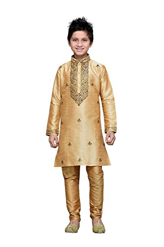 The Stylam Indian Designer Partywear Ethnic Wedding Chikoo Wedding Readymade Kid by The Stylam