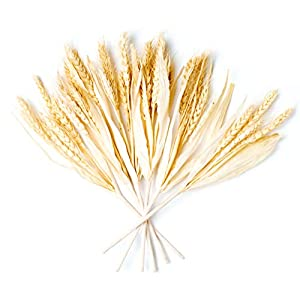 Silk Flower Arrangements CraftMore Wheat Fall Pick Set of 6