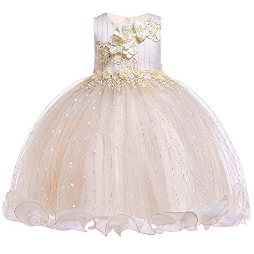 Girls Pageant Dress Size 4-5 Flower Formal Bridesmaid Wedding Dresses 5T A-Line Lace Tutu Tulle Girl Dresses Sleeveless Knee Length Easter Church Dress for Kids 6 Years Cute Backless (Champagne 120)