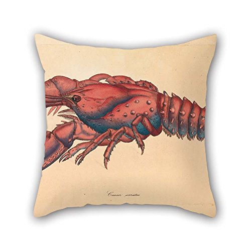 (The Oil Painting James Sowerby - Serrated Lobster, Cancer Serratus Pillowcover of 18 X 18 Inches / 45 by 45 cm Decoration Gift for Him Adults Chair Home Dinning Room Kids Girls (Two Sides))