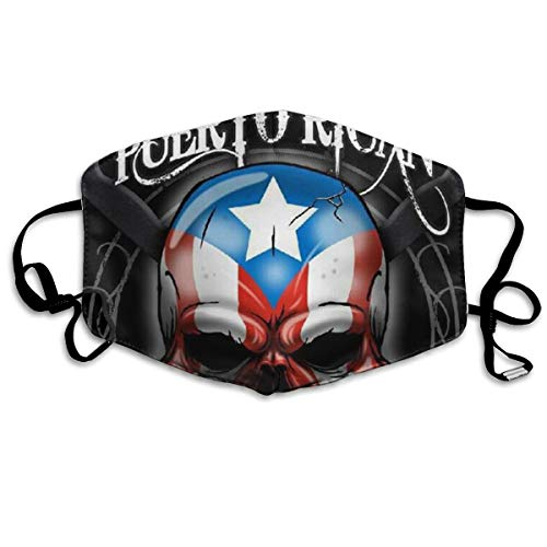 Unisex Puerto Rico Skull Anti Pollution Breathable Health Masks Mouth Face Masks