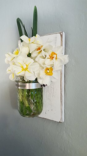 Rustic Mason Jar Wall Vase | Antique White - Cottage Garden Wall Vase