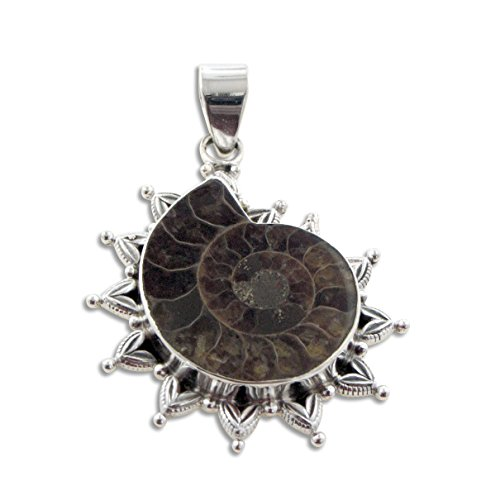 Large Ammonite Fossil Seashell set in Sterling Silver Pendant - Ammonite Fossil Sterling Silver Pendant