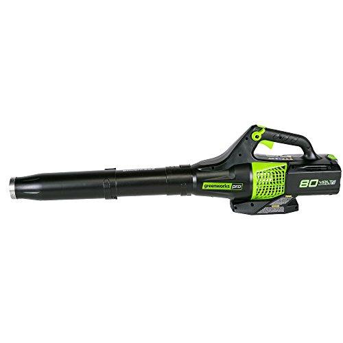 Greenworks PRO 145 MPH 580 Cordless Blower, Not BL80L00