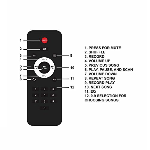 STARQUEEN Remote Control for Pa System