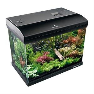 Aquarium System, Mirabello 60 Acuario 62,5 x 32,5 x 40h cm, 60 L, con filtro, luz con temporizador y accesorios: Amazon.es: Productos para mascotas