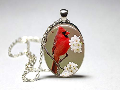 Cardinal On Branch Oval Pendant Necklace Glass Women,jewelry,gift