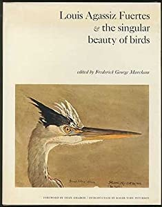 Louis Agassiz Fuertes and the Singular Beauty of Birds Louis Agassiz Fuertes