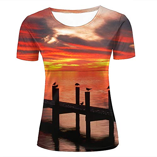 Womens 3D Printed T-Shirts Sunlight Over Sky in Sunset with Bird Creative Novelty Short Sleeve Tops Tees -