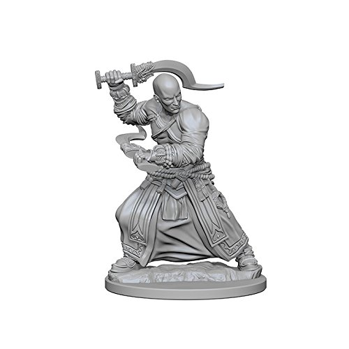 Pathfinder Deep Cuts Unpainted Miniatures: Human Male Monk]()
