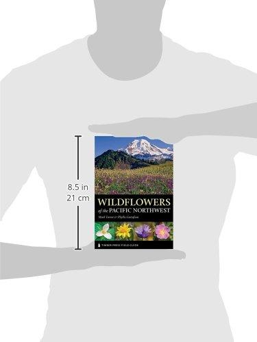 Love In Full Bloom (Wildflowers) (Volume 5)