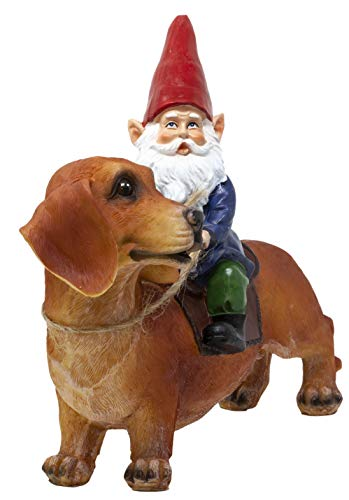 Funny Guy Mugs Gnome and a Dachshund Garden Gnome Statue- Indoor/Outdoor Garden Gnome Sculpture for Patio, Yard or Lawn by Funny Guy Mugs (Image #4)