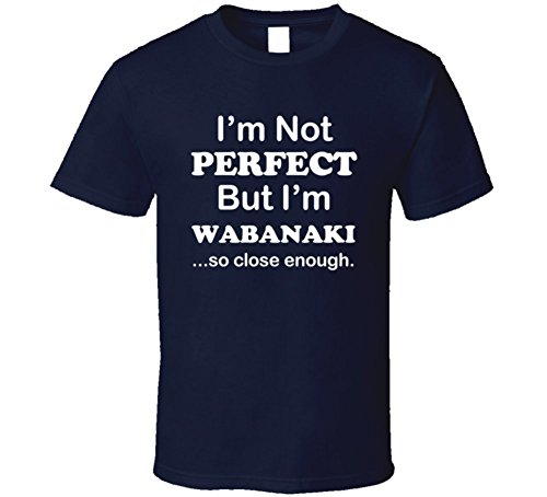 I'm Not Perfect But I'm Wabanaki So Close Enough Funny Gift T Shirt 2XL Navy