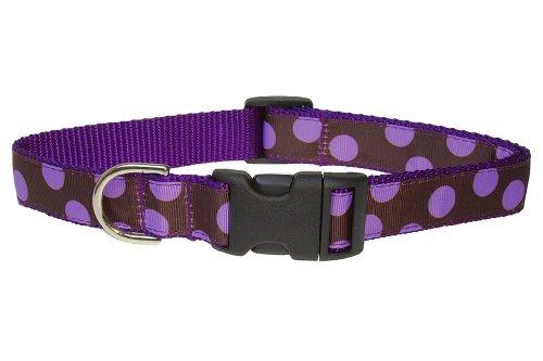Sassy Dog Wear 10-14-Inch Orchid/Chocolate Dot Dog Collar, Small
