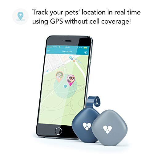 Findster Duo+ Pet Tracker Free of Monthly Fees - GPS Tracking Collar for Dogs and Cats & Pet Activity Monitor - Tracks 2 Pets by Findster (Image #1)