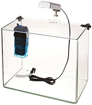 Penn Plax Curved Corner Glass Aquarium Kit Filter LED Light Float Glass for Maximum Viewing 5 Gallon