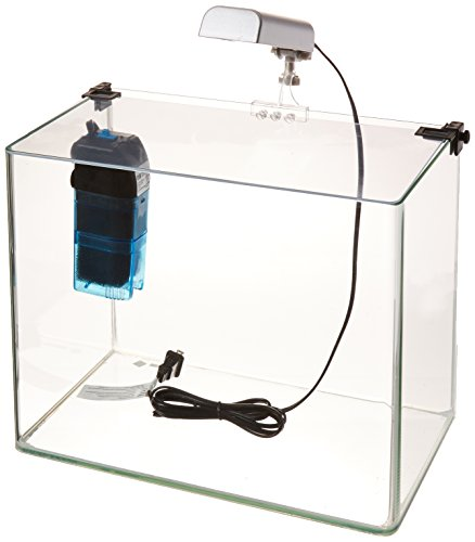 Penn Plax Curved Corner Glass Aquarium Kit, Filter, LED Light, Float Glass for Maximum Viewing 5 ()