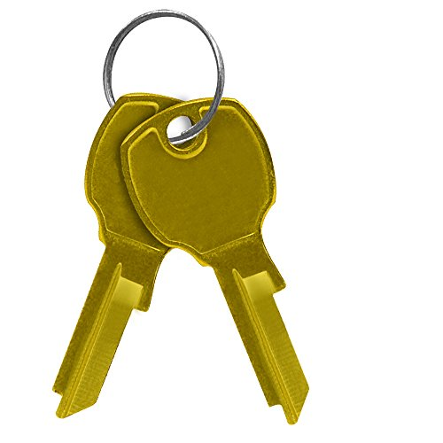 Salsbury Industries 3799 Key Blanks for Standard Locks of 4C Horizontal Mailboxes (Box of 50)