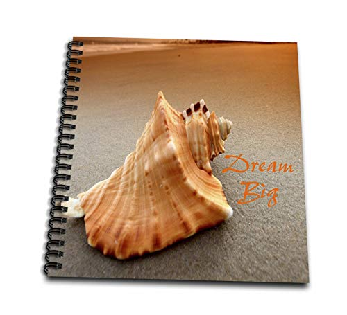 3dRose Lens Art by Florene - Shells - Image of Real Nautilus Shell with Dream Big Message - Drawing Book 8 x 8 inch (db_305865_1)