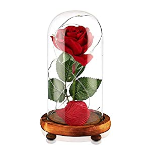 Beauty and The Beast Rose Red Silk Rose in Glass Dome with Fallen Petals & LED Light on Wooden Base Preserved Flowers Gift for Valentine's Day Party Wedding Anniversary Birthday Gift Card Inside 11