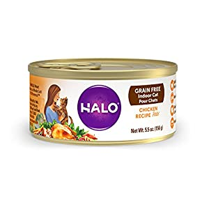 Halo Grain Free Natural Wet Cat Food, Indoor Chicken Recipe, 5.5-Ounce Can (Pack Of 12) 91