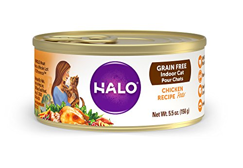 Halo Grain Free Natural Wet Cat Food, Indoor Chicken Recipe, 5.5-Ounce Can (Pack Of 12) (The Best Wet Cat Food For Indoor Cats)