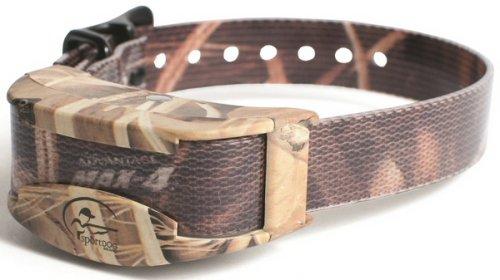 SportDog SDR-AC Add A Dog Collar - SDR-AC by SportDOG Brand (Image #1)