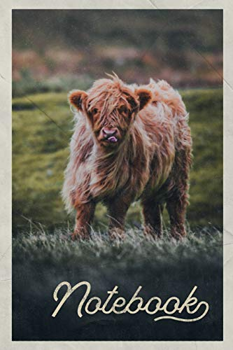 Pdf Travel Notebook: Aberdeen Angus Cattle Excellent Composition Book Journal Diary for Men, Women, Teen & Kids Vintage Retro Design for researching where to see Highland Cows in Scotland