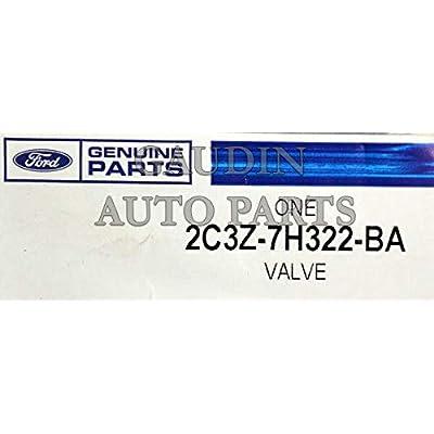 Ford 2C3Z-7H322-BA Valve ASY: Automotive