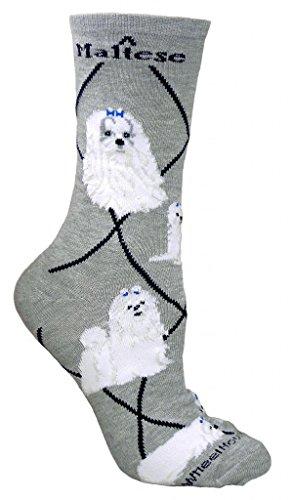 Maltese Cotton Puppy Dog Breed Animal Socks 9-11