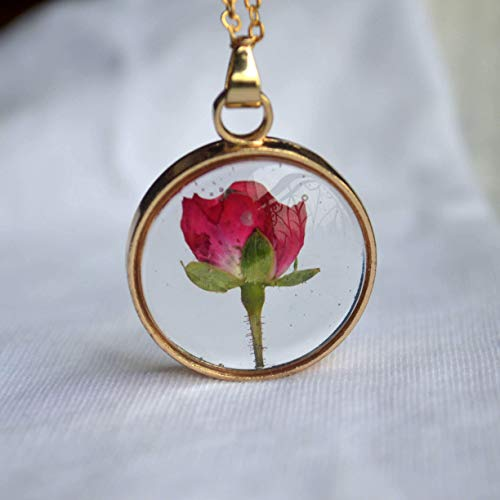 Red Rose Real Flowers Floating Locket 18k Gold Plated Chain Long Necklace ()