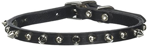 (Coastal Pet Products Circle T Oak Tanned Leather Spiked Dog Collar, 3/8