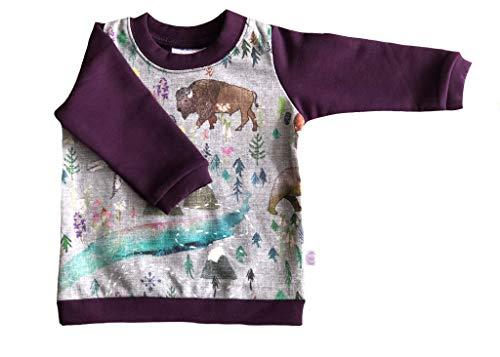 (Hau'oli Apparel GOTS Certified Organic Cotton/Tencel Fleece Sweatshirt Baby Girl (Summer Aurora, 6-12m))
