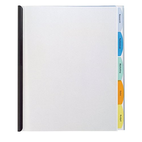 Wilson Jones View-Tab Report Cover, Punchless, 5 Tabs, 20 Sheets, Clear (W55766D)